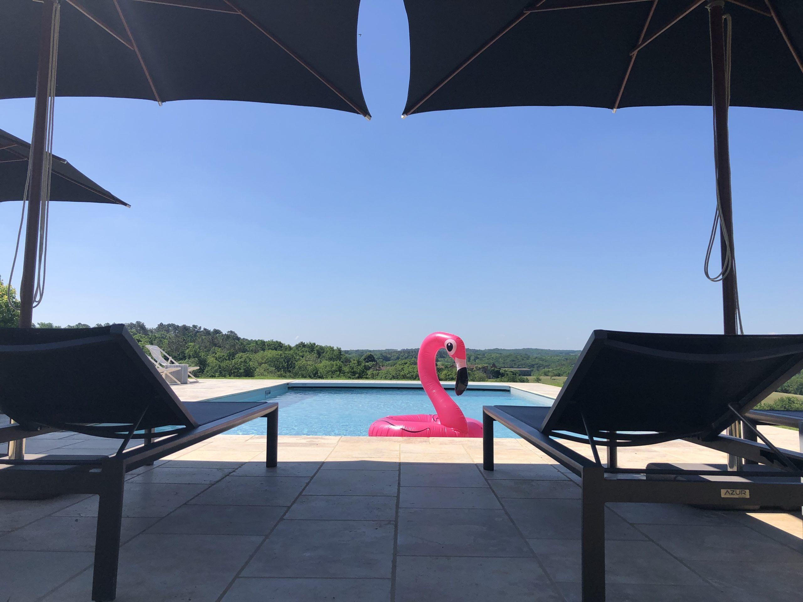 The private pool of Le Mas, a 5-bedroom gîte in the Dordogne, with Gescove parasols and sun loungers and a pink inflatable flamingo