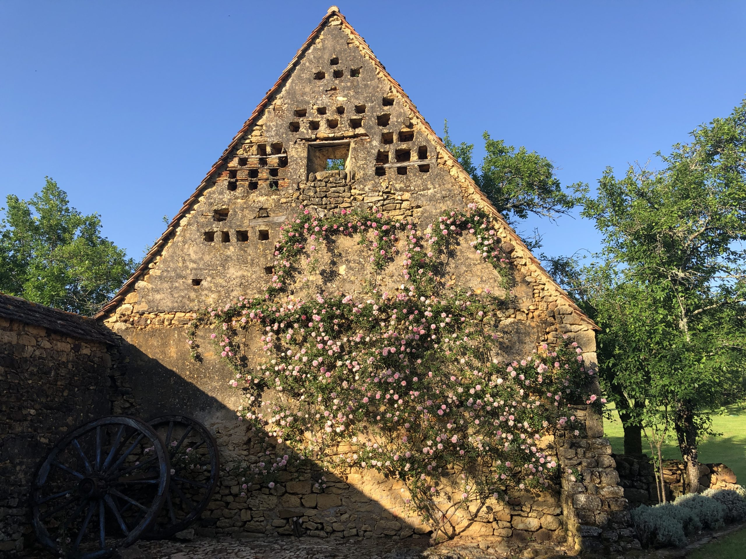 Pigeon holes in a wall covered by roses in the garden of a stunning holiday home in the Dordogne