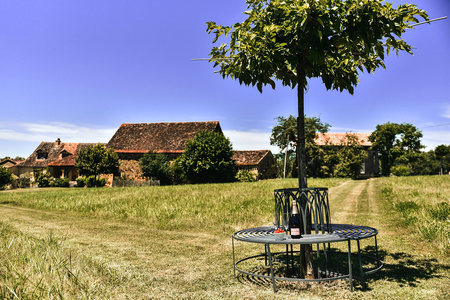 5-star holiday homes in the Dordogne countryside: the round bench and the mulberry tree with paths mown in a meadow with a barn and other buildings in the background