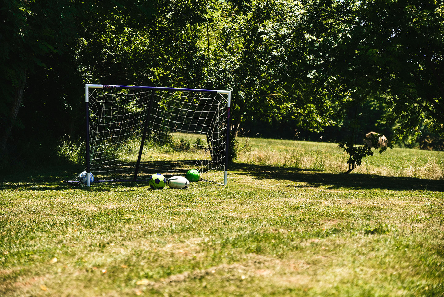 The Dordogne garden of a farmhouse rental location with a football goal backed by trees