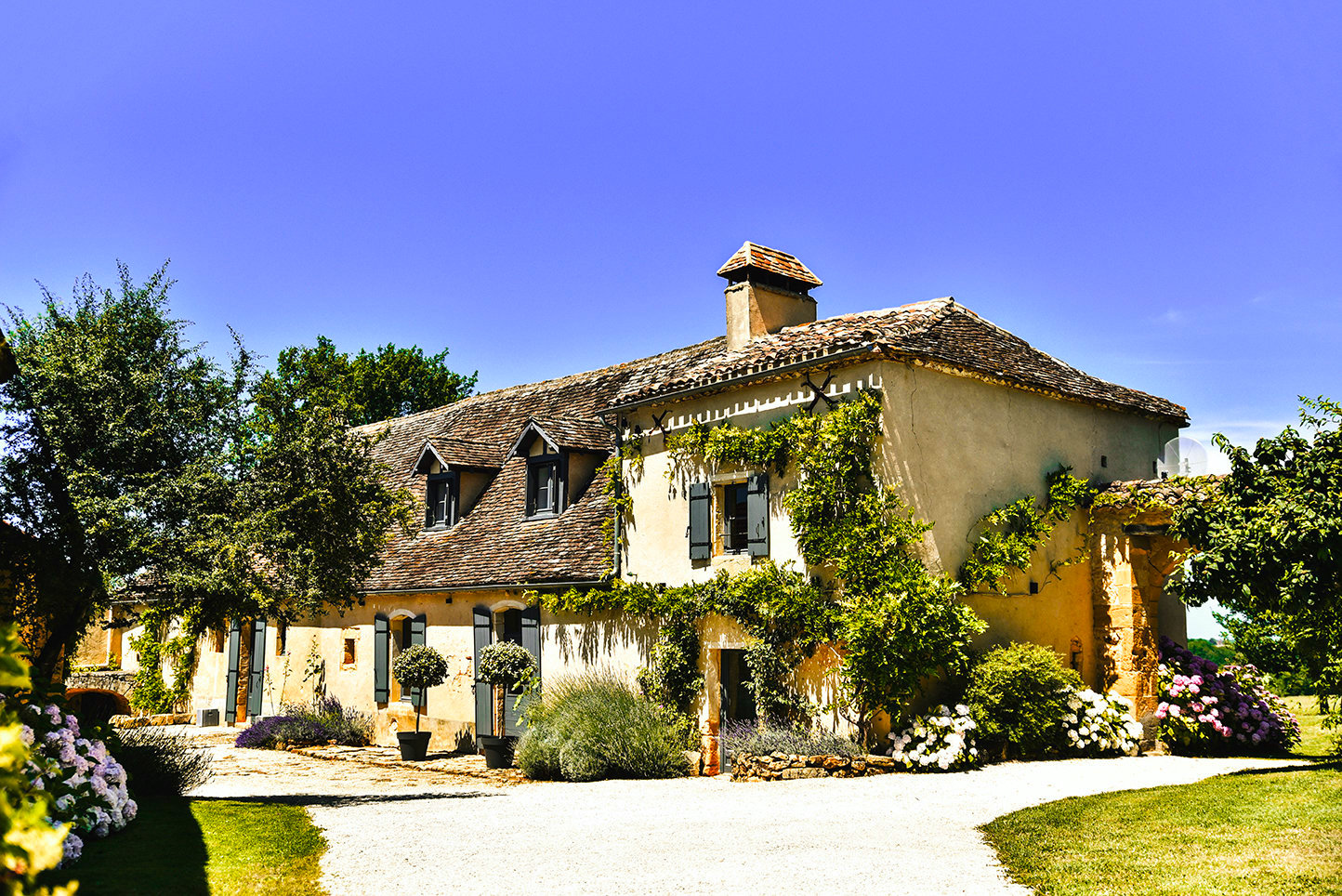 A beautiful stone farmhouse in a rural location in the Dordogne with wisteria, roses and trees